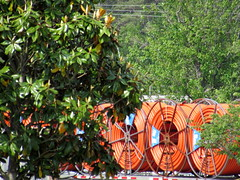 Orange Hose Rolls. (dccradio) Tags: lumberton nc northcarolina robesoncounty outside outdoors tree trees greenery nature trailer semi rig coils rolls orangehose transportation