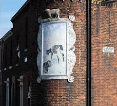 Wall panel showing cattle and sheep, Carlisle (Allan Rostron) Tags: carlisle corners terracedhouses street carlislecumbria cumbria woodroufeterrace