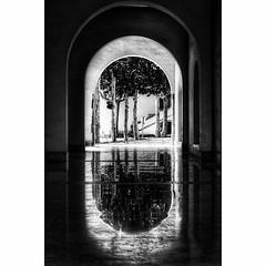 #barcelona #photooftheday #photographyaks_bw #codorniu #reflection #wanderlust #2016 (.Tatiana.) Tags: instagramapp square squareformat iphoneography uploaded:by=instagram lofi