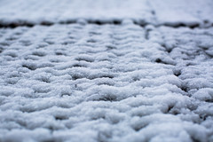 Snow Covered (adamopal) Tags: canon canon5d canon5dmkiii canon5dmarkiii snowcovered snowday snowday2017 unexpectedsnow lookingup snow covered day 2017 unexpected white grey
