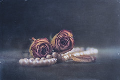 Roses and Pearls (RoCafe Off for a while) Tags: lensbaby roses stilllife pearls edge80 dark black lowkey withered textured vintage romantic nikond600
