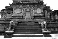 Kappe Chennigaraya temple in Belur (ravitejanadiminti) Tags: hoysalaempire hoysala karnataka india indianhistory history historical architecture belur canon80d canon architectural temple ancient blackandwhite