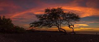 Kiholo Afterglow