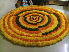 IMG_20160918_102124 (bhagwathi hariharan) Tags: onam pookalam flower rangoli kolam carpet floral nalasopara nallasopara virar aathapookalam tiruonam