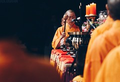 Buddha birth day (vito.chiancone) Tags: buddha buddah birthday birth celebration day monk orange bold ceremony candles holy man people street religion brisbane qld queensland australia