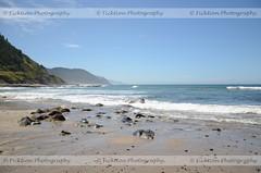 A Beautiful Day (ficktionphotography) Tags: coast coastline nature oregon pacificcoast rocks sand sky trees roadtrip2013