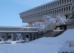 SFU Winter Morning (jvde) Tags: 3570mmf3345nikkor coolscan burnaby film fujicolor nikonfe snow sfu gimp