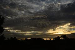 Autumn skys (Dreaming of the Sea) Tags: clouds sunset bluesky bundaberg palmtrees tamronsp2470mmf28divcusd nikon d7200 dusk twilight trees 1000v40f 1500v60f