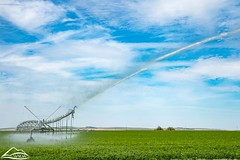 End gun on irrigation circle (Washington State Department of Agriculture) Tags: circle field irrigation spring sprinkler water