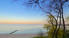 Lakeshore Evening (imageClear) Tags: trees lakeshore evening beauty nature beach aperture nikon d600 nikkor1224mm wideangle horizon sheboygan wisconsin imageclear flickr photostream