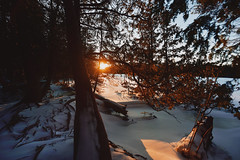 """On admire le monde à travers ce qu'on aime"" (David Anghelone) Tags: nikon d810 tamron 1530 28 sunset coucher de soleil rayondesoleil canada parc naturel bruce peninsula ontario neige snow winter hiver orange forêt"