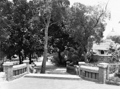 Taronga Park (State Library of New South Wales collection) Tags: statelibraryofnewsouthwales sydney harbour views zoos taronga architecture buildings