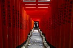Hie shrine (maekke) Tags: tokyo japan hie hieshrine shrine torii canon eos6d color streetphotography 2017 tourist travelling man stairs tamron