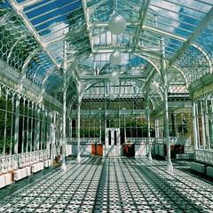 Horniman Conservatory (Martin Deutsch) Tags: hornimanmuseum conservatory vsco london