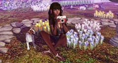 one with nature (lunarlieanzac) Tags: nature people blueberry catwa halfdeer izzies keke jian maitreya nani empire sintiklia theplastik whimsical powderpack luxebox pinkfuel secondlife sl photo spring kawaii animals uber