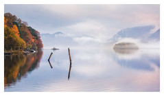 Pastel Morning (Vemsteroo) Tags: lakedistrict derwentwater derwent lake water reflection mist fog ethereal mountains fells hills canon 5d mkiii 70200mm autumn cumbria seagull beautiful nature beautyinnature sunrise dawn outdoors adventure