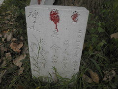 Guizhou China 2016 惠水6 (黔中秘境) Tags: china guizhou asia mountains 中国 贵州 亚洲 山 大自然