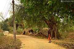 17-04-10 India-Orissa (40) Nayagarh R01 (Nikobo3) Tags: asia india orissa nayagarh rural color culturas social gentes people sadhu travel viajes nikobo joségarcíacobo nikon nikond800 d800 nikon247028 flickrtravelaward ngc wonderfulworld