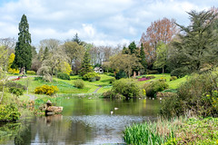 Consall Hall Gardens. (daveduke) Tags: consallhallgardens staffordshire weddingvenue mrpodmore sonya7m2 sonyilcea7m2 sony70300mmgoss explored