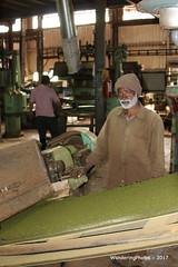 Rolling & crushing the tea leaves - Highfields Tea Factory - Coonoor Tamil Nadu India (WanderingPhotosPJB) Tags: india tamilnadu ooty coonoor teaplantation teapickers tea rolling cutting crushing tealeaves