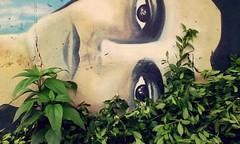 de la tierra (Felipe Smides) Tags: mapuche muralismo mural felipesmides smides