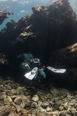 IMG_1141 (nealmoc) Tags: kona bigisland hawaii kailuakona underwater rebreather poseidon nobubbles underwaterphotography canon nauticamhousings
