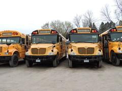 Ransomville Bus Lines Inc (Nedlit983) Tags: school bus ic ce