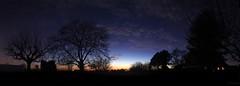 Evening stars - Les étoiles du soir (Philippe Meisburger Photo) Tags: panorama tree trees arbre arbres dusk sunset crepuscule coucher de soleil etoile etoiles star stars planète planàtes planet planets mars venus clouds nuages ombre chinoise hautrhin alsace grand est france europe philippe meisburger 2017