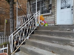 Stalker (navejo) Tags: montreal quebec canada stalker teddy balcony stairs railing