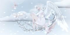 .reach for the sky. (Jasmine * Stardust it's magic) Tags: second life sl secondlife angel dreamy birds lights sky blue pink pure magical breathe zenith catwa maitreya argrace anc half deer bento