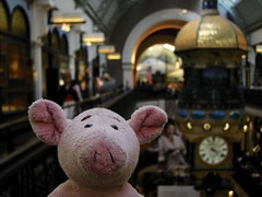Dave with ship clock (pianoforte) Tags: queenvictoriabuilding qvb shopping sydney sydneynsw downtown businessdistrict dave pig travelingnongnome australia2017 australia