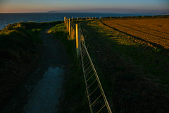 Lit up fence (A Costigan (off for a while)) Tags: fencefriday fence outdoor scenic scenery donabate dublin coast coastal seaside irishsea