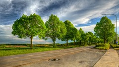 On the Road 1305 (YᗩSᗰIᘉᗴ HᗴᘉS +5 400 000 thx❀) Tags: road hdr trees green clouds namur belgium belgique sky impressive wonderful hensyasmine