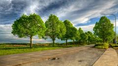 On the Road 1305 (YᗩSᗰIᘉᗴ HᗴᘉS +5 400 000 thx❀) Tags: road hdr trees green clouds namur belgium belgique sky impressive wonderful hensyasmine