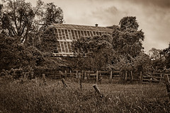 Old Barn (Mike Schaffner) Tags: abandoned bw barbedwire barn blackwhite blackandwhite decay decayed derelict deserted dilapidated fence industry monochrome old overgrown ruins sepia newulm texas unitedstates us