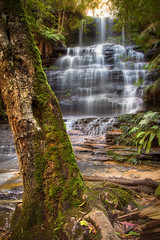 Junction Falls || LAWSON WATERFALL CIRCUIT || BLUE MOUNTAINS (rhyspope) Tags: australia aussie nsw new south wales canon 5d mkii lawson waterfall creek stream junction falls forest woods rainforest rhys pope rhyspope blue mountains travel explore tree