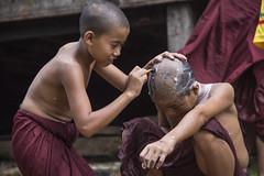 Myanmar (el_mo) Tags: birmania persone monaco ritratti pagoda buddha buddhism budha budda buddismo ontheroad ontheroadagain onthroad asia asian asiatic southeast kalaw shan myanmarburma mm