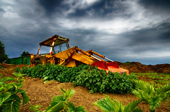 "Heavy Plant (Stephen Reed. ""Over 1 Million Views Thanks"") Tags: jcb plant hdrefexpro2 nikon d7000 lightroomcc photoshopcc tamron1024mm wideangle surrey england"