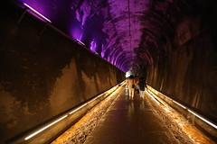 苗栗功維敘隧道 Gong Wei Xu Tunnel, Miaoli, Taiwan (gitin750809) Tags: 台灣 苗栗 功維敘隧道 旅遊 隧道 taiwan miaoli gongweixutunnel tunnel travel traveling travelphotography photography gitin750809