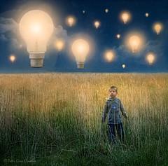 In the Land of Big Ideas (Peter Gurr Creative) Tags: conceptualphotography fineartphotography westrise lens prime primelens 18g d7200 dslr nikon lights light sky night surrealism surreal fineart boy marsh field bulbs bulb lightbulbs lightbulb ideas land
