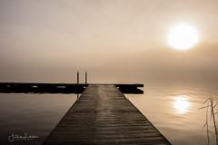 The Sound Of Silence (Fredrik Lindedal) Tags: landscape lake lights fog mist morning jetty reflection sun skyline sky sunlight foggy reed serenity sweden sverige visitsweden tripod lindedal