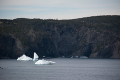 Cold on a Warm Day (Clif Budden) Tags: 2017 april canada cold ice iceberg nl nature newfoundland outdoors saturday