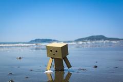 Tateyama city / Canon EOS60D:SIGMA Art 30mm F1.4 DC HSM (telenity) Tags: japan tateyama danboard mini canon cute coast ocean eos60d sigma 日本 館山 ダンボー ミニ 北条 海岸 海 かわいい 可愛い
