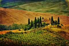 Val d'Orcia Tuscany (Rex Montalban Photography) Tags: rexmontalbanphotography tuscany valdorcia poderebelvedere italy europe texture sanquiricodorcia