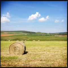 2014-06-22-0129.jpg (Fotorob) Tags: land weide engeland isleofwight england freshwater