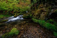 Mi rincón (AvideCai) Tags: avidecai paisaje sigma1020 largaexposición agua bosque