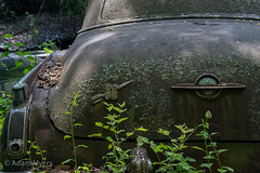 Oldsmobile, March 2017 (adamkmyers) Tags: oldsmobile olds88 rocket88
