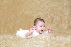 398A8046 (AlexSSC) Tags: baby photography indoor strobist flashlight studio setup sydney