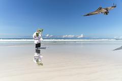 Transplant Galapagos + Quito (DROSAN DEM) Tags: transplant trasplante quito santa cruz ecuador galapagos playa brava low tide marea baja beach sky cielo cloud nubes sand arena people ramo vendedora