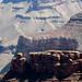 2011-09-10-111202_Grand Canyon National Park